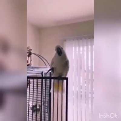 The master of suspense