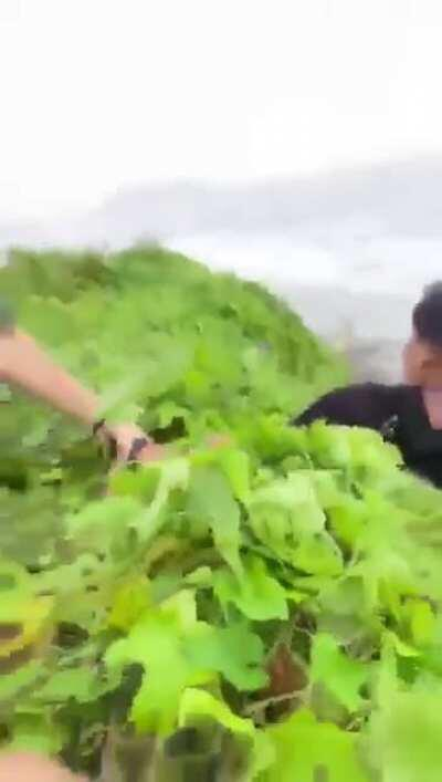 Skater almost falls off a cliff