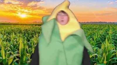 Better buy the corn