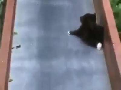 Wait till the end... Haha...last buddy is in trouble