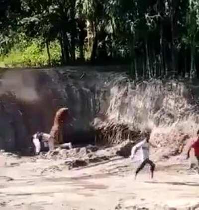 Tiger attack on man.