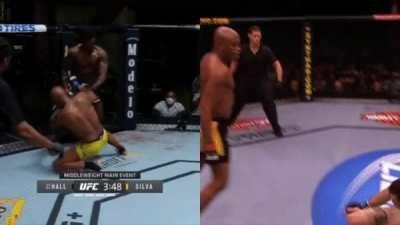 The Sad but Beautiful Story of MMA