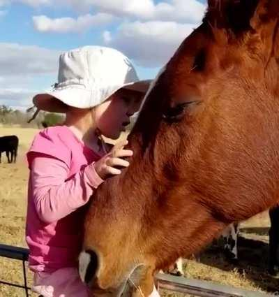 The little horse whisperer