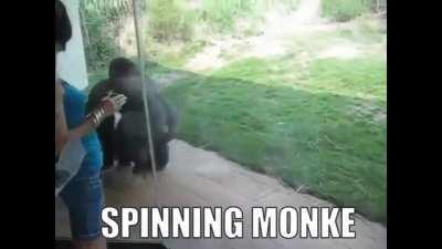 le spinning monke
