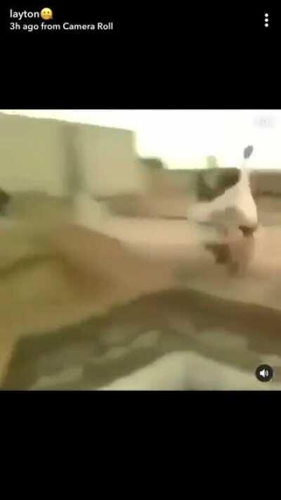 Jumping over a deep hole