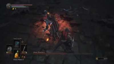 First time poster, and first time playing through a souls game! How's my parry game?
