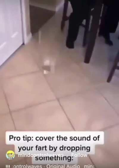 Pro Tip: Cover the sound of a fart by dropping something