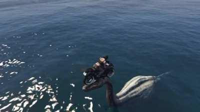 I landed on the head of the Loch Ness Monster in GTA 5