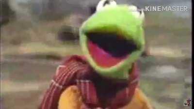 Kermit fucking dies