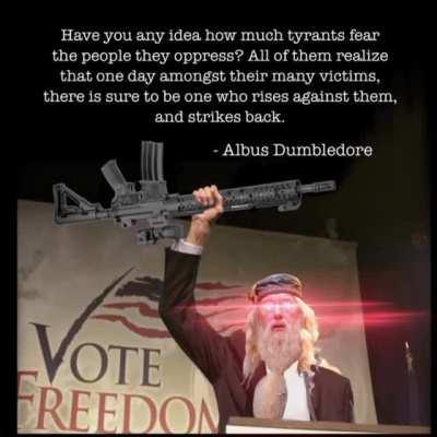 gunpolitics