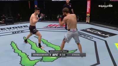 [SPOILER] Said Nurmagomedov vs. Mark Striegl