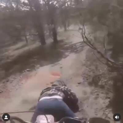 Bike go vroom