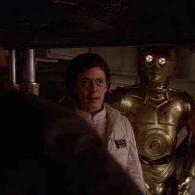 Steve Buscemi as Princess Leia