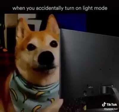 Accidentally turning on light mode