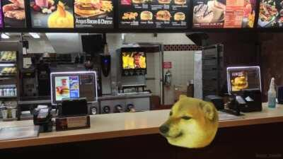 He finally has a cheemsburbger. The true happiness.(Sorry for the crosspost btw.