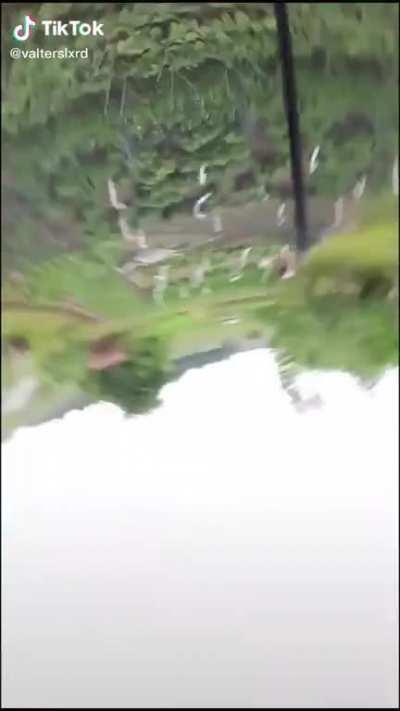 How he fall so hard on a trampoline