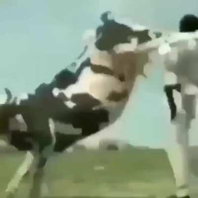 I see why farmers have a hard life now....