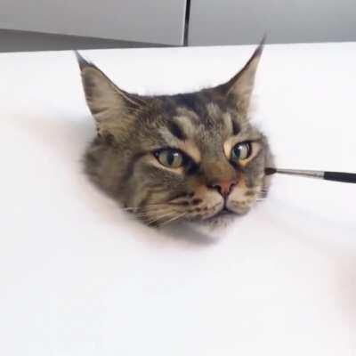 Extremely realistic cat painting!
