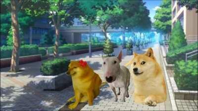 Doge: The Anime
