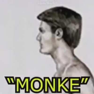 Monke Moment