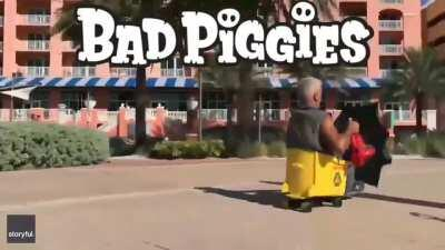 these are some bad piggies! 🐽