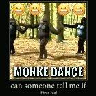 WTF(frick) Monke no supposed too!! 🤬🤬🤬