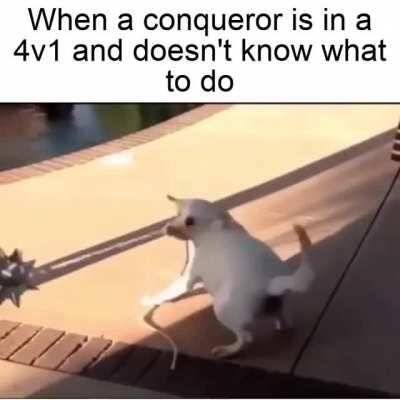 Nothing personal to Conq mains!