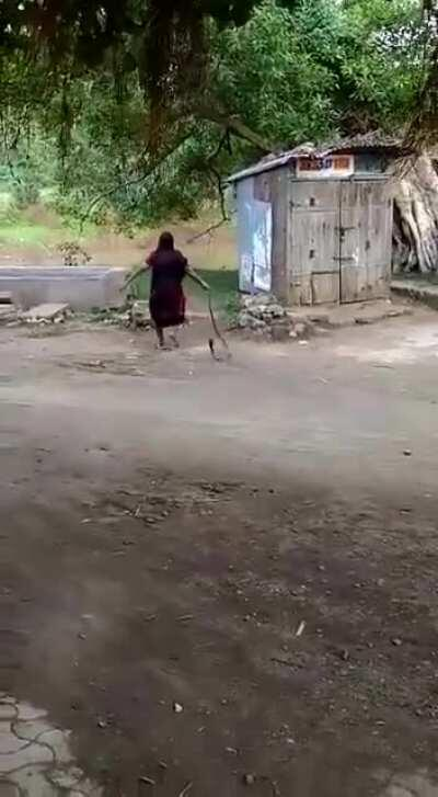 Old lady India yeets a cobra that wandered into her home