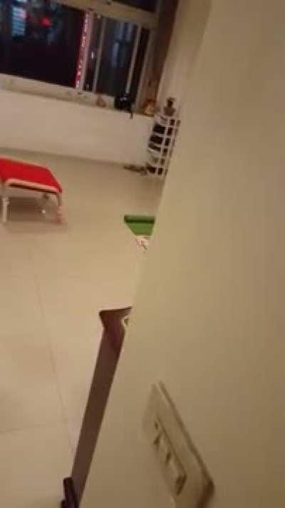 Guy films his mom practicing qigong