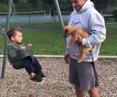 Good boy pushes his little buddy on the swing
