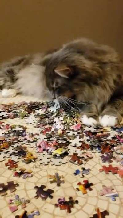 Poof getting a piece of that puzzle