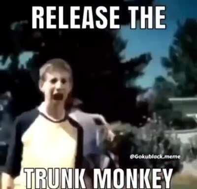 Its Monkey Time