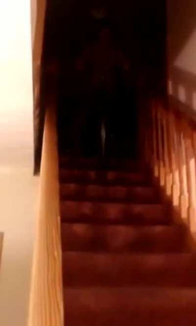 Cycling down the stairs while being drunk