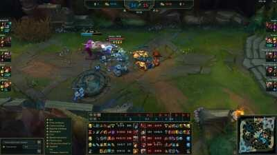 a fed Xin vs some cats