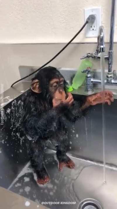 Riczer bañandose