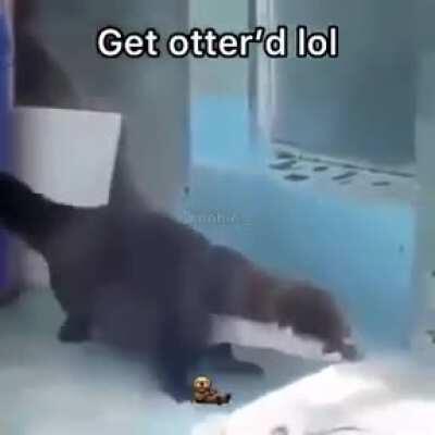 Some good otter boi dancin