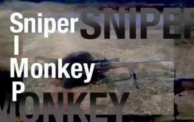 Sniper Rule