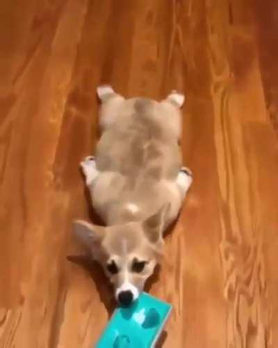 Fluffy sweeper