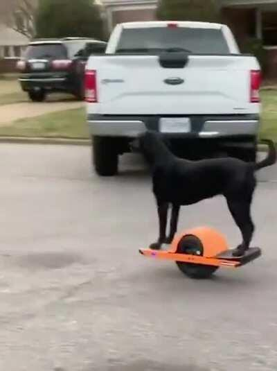 he was a skater boy, he said see you later boy