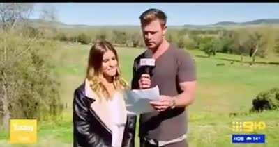 Thor acting as Chris Hemsworth on Live TV