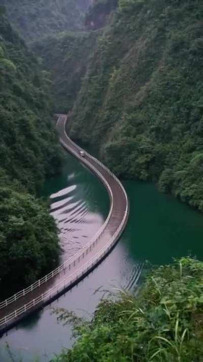 This Floating Bridge