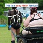 You ever see a pony fetish festival?