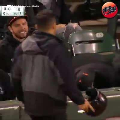 Catching a foul ball