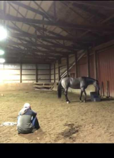 Girl acts sad to see how her horse reacts