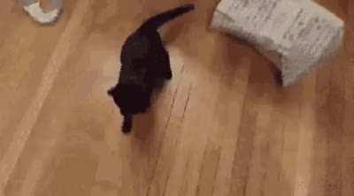 Surprise!!