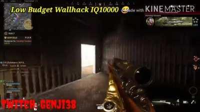 Low Budget Wallhack IQ10000 edited