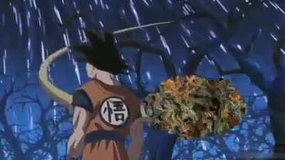 You ever smoke weed so good you feel like you're on a cloud?