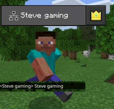 Steve gaming