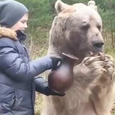 papa bear approves