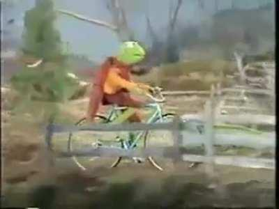 Kermit busted his A55
